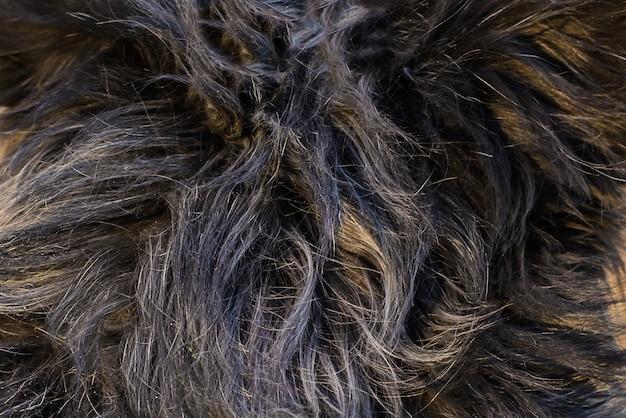 毛皮のような太い暗い犬の髪の抽象的な背景