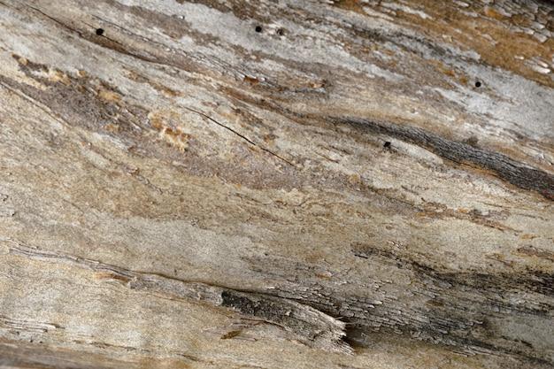 古いひびの入った木の幹の抽象的な背景。アートワークのクローズアップのトップビュー。