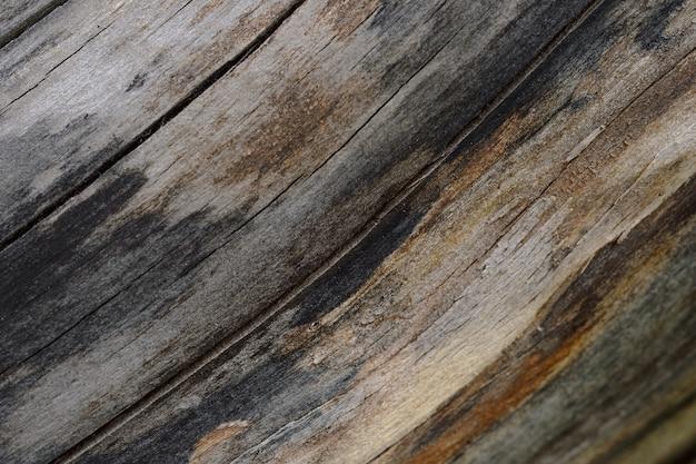 오래 된 금이 나무 줄기의 추상적 인 배경입니다. 삽화에 대한 근접 촬영 topview.