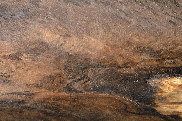 古い木の幹の抽象的な背景。アートワークのクローズアップのトップビュー。