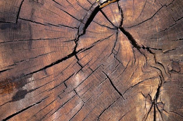 오래 된 나무 표면의 추상 배경