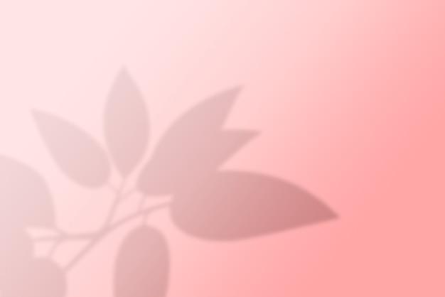 壁にヤシの葉の影の抽象的な背景