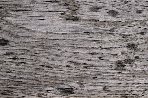 Abstract background of old wooden surface with rain drops. closeup topview for artworks.
