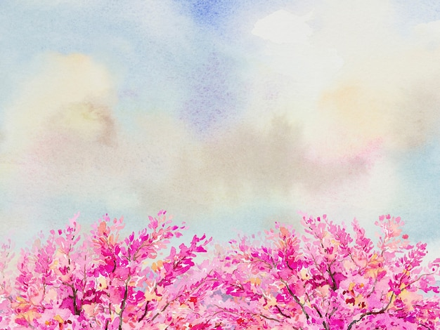 抽象的な背景、ピンクの花。コピースペースと野生のヒマラヤザクラのカラフルな自然の水彩画イラスト