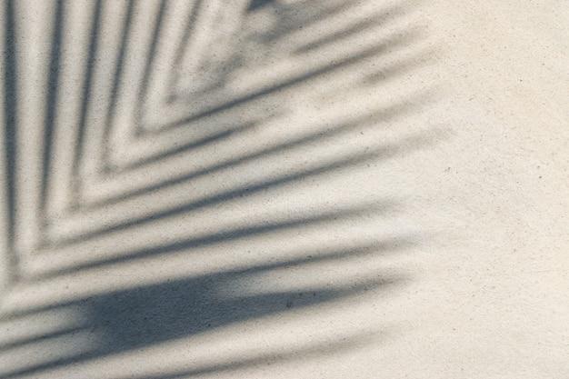 Абстрактный фон текстура тени листа на бетонной стене