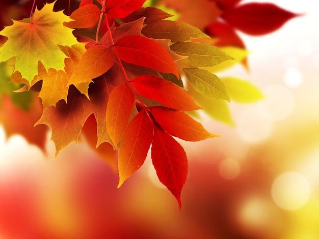 Абстрактный фон с яркими осенними листьями