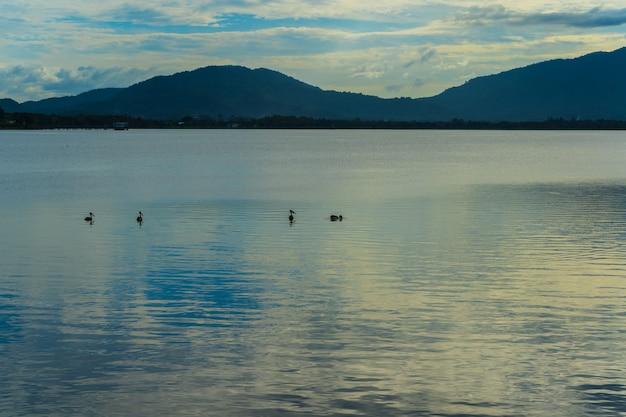湖と山の背景にある鳥の白黒画像の抽象的な