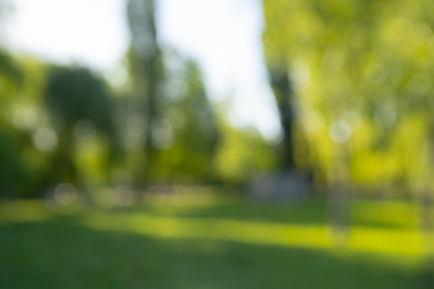 Abstract blur city park bokeh for a  background