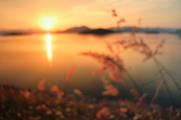 Abstract blurred defocused sunset nature.