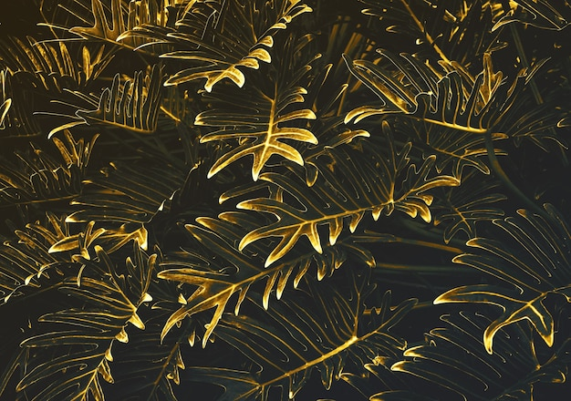 Abstract of exotic fern leaf in gold background.nature concepts design.