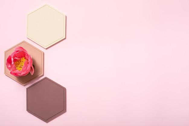 파스텔 벌집 모양이 있는 추상 플랫 레이 배경. 크리에이 티브 플랫 레이 배경입니다. 창의적인 아이디어, 레이아웃.