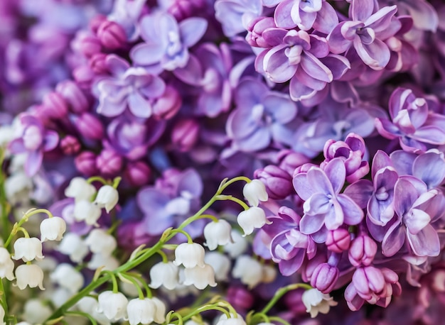 紫色のテリーライラックの花びらとスズランの花が咲く抽象的な花の背景