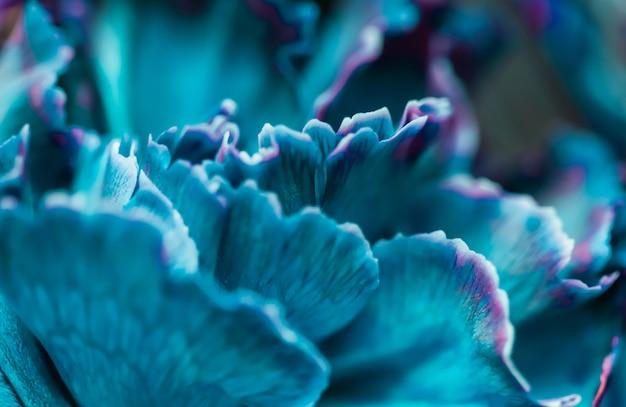 Абстрактный цветочный фон синий цветок гвоздики макро цветы фон для праздника дизайн бренда