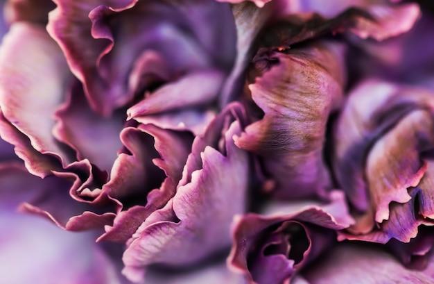 Абстрактный цветочный фон фиолетовый цветок гвоздики макро цветы фон для праздника дизайн бренда