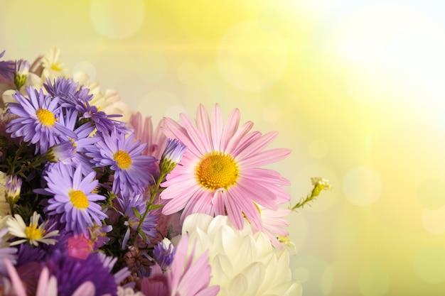Абстрактный цветочный фон с лучами солнечного света