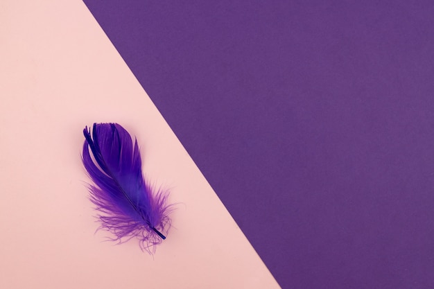 パステルピンクと紫の色と紫の羽の抽象的な幾何学的な紙の背景。