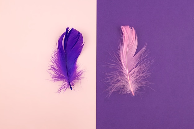 Abstract geometric paper background of pastel pink and purple colors with violet feather.