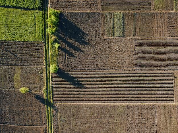 茶色と緑色のさまざまな作物の農業区画の空中の抽象的な幾何学的形状。ドローンによる写真