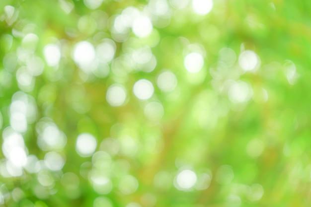 Abstract green natural bokeh background