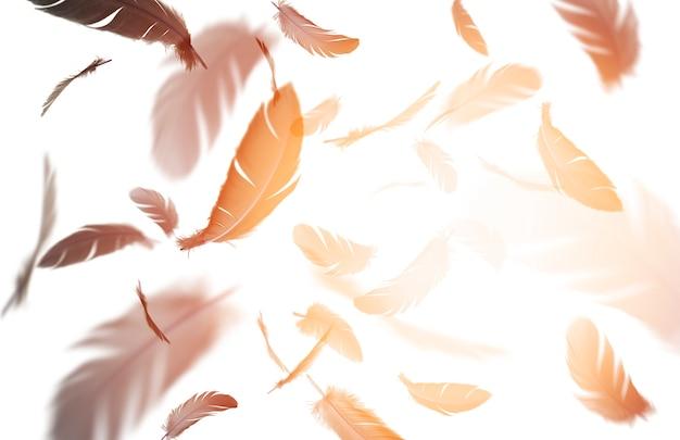 Абстрактная группа перьев черной птицы, плавающих в солнечных перьях, летающих на белом