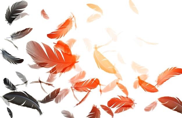 Абстрактная группа перьев черной птицы, плавающих в солнечных перьях, летающих на белом фоне
