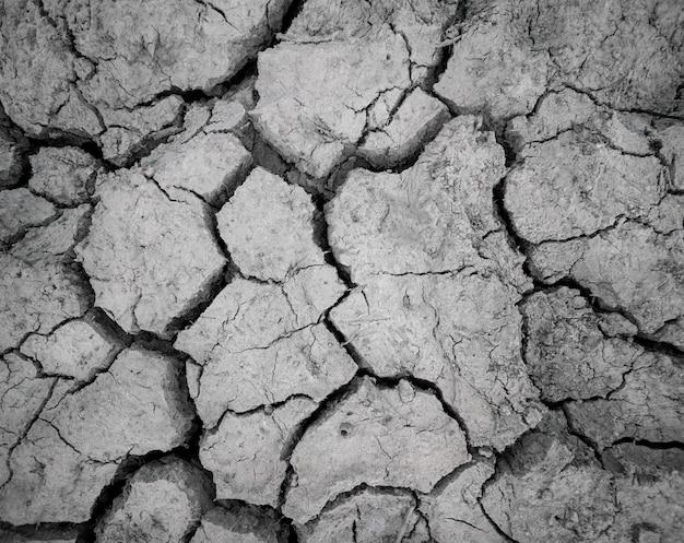 Abstract land arid ground texture