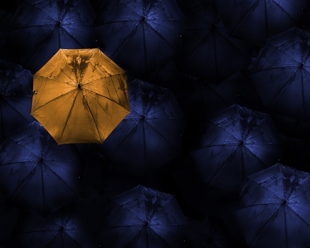 Abstract  of leader with with many dark and a orange umbrella.