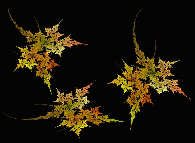 Abstract maple leaf  fractal  on the black