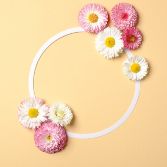 Abstract minimal composition. rounded frame border with daisy flowers on pastel yellow background. flat lay style, spring nature concept