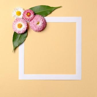 抽象的な最小限の構成。パステルオレンジの背景の隅にピンクの花と緑の葉の正方形のフレームの枠線。