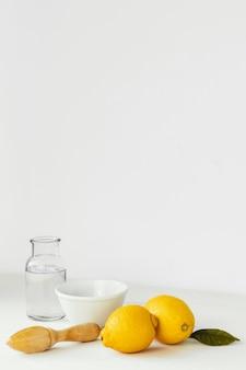 추상 최소한의 개념 레몬
