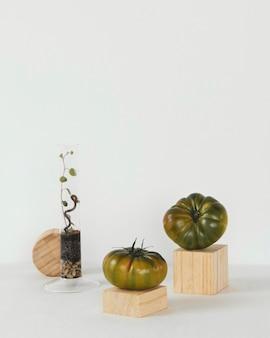 Abstract minimal concept studio creativity