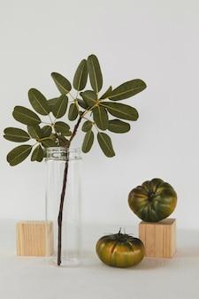 抽象的な最小限の植物と緑の植物
