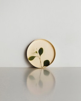 Abstract minimal plant in a cardboard circle
