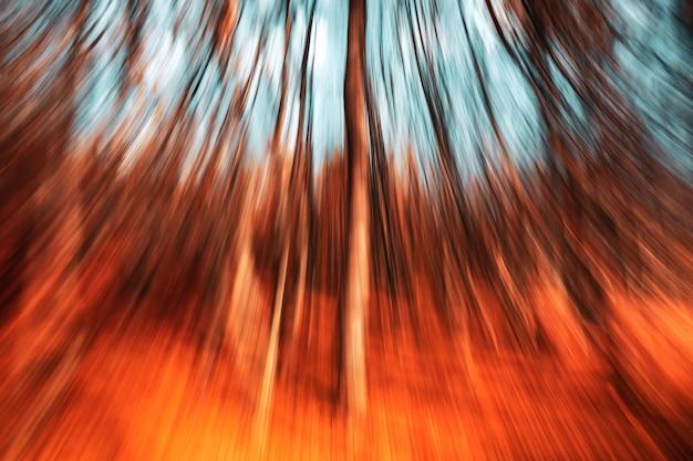 自然の抽象的な背景。秋の森の木々のモーションブラー