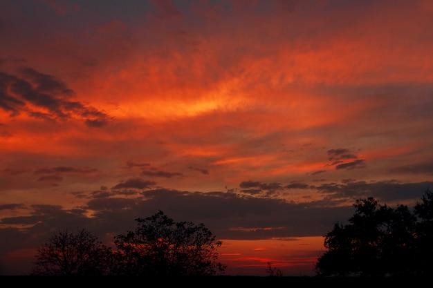 抽象的な自然の背景。劇的で不機嫌そうなピンク、紫色の曇り夕焼け空