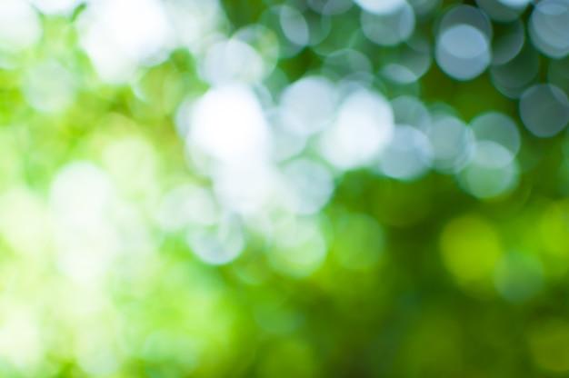 背景のツリーの背景から抽象的な自然緑ボケ