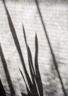 葉の影とぼやけた背景の抽象的な性質がコンクリートの壁に反映され、ここにモックアップやデザインを配置できます