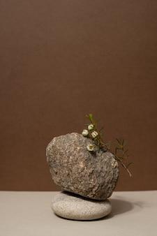 石の構成とコスメティのための乾いた枝ニュートラルベージュの背景を持つ抽象的な自然のシーン...