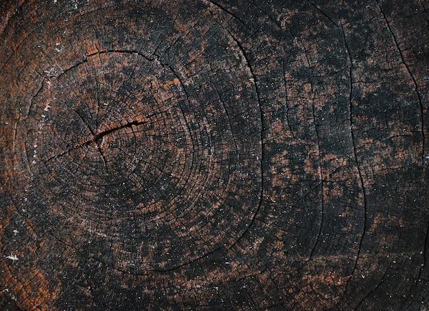 自然の背景の抽象的な古い木の質感