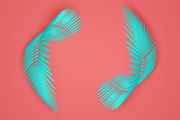 Abstract pastel pink and blue modern background of an empty space in the center surrounded by two rounded fluffy palm leaves. 3d illustration.3d render