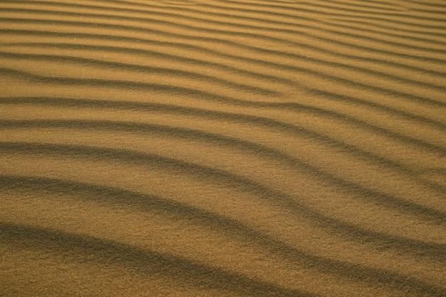 Abstract pattern of desert sand ripples in evening sunlight, huacachina sand dune, peru