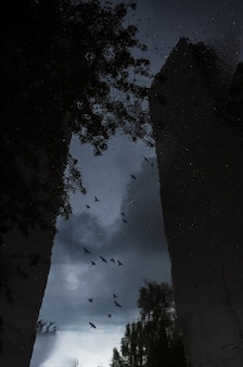 Abstract reflection of a city street in a rainy puddle the edge of the umbrella is visible