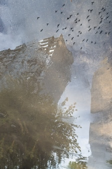 Abstract reflection of a city street in a rainy puddle. flying birds
