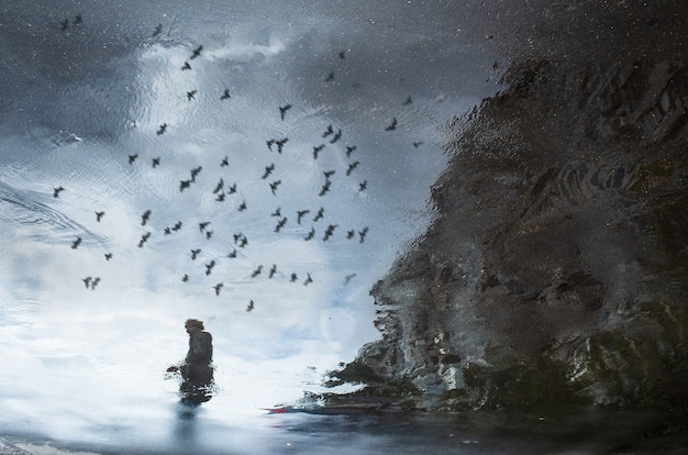 비오는 웅덩이에서 도시 거리의 추상 반사. 날아다니는 새