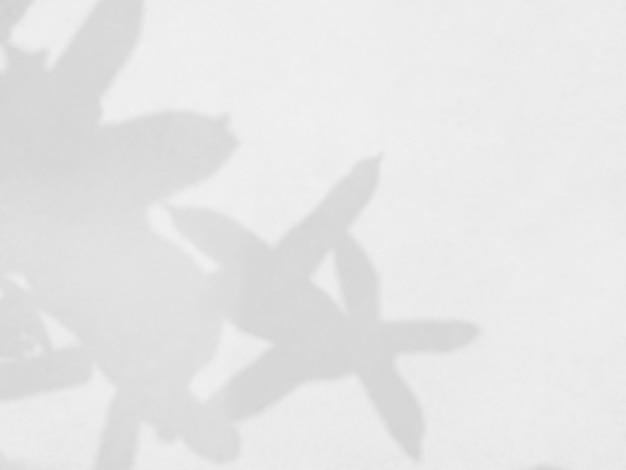 写真のモックアップポスター静止壁アートデザインプレゼンテーションの白い壁オーバーレイ効果に葉の抽象的な影