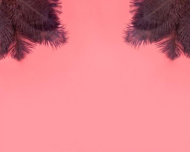 茶色の羽と抽象的な柔らかいパステルピンクの背景、コピースペースと背景テクスチャ上面図