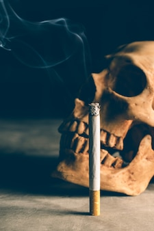 Abstract still life skull of a skeleton with burning cigarette, stop smoking campaign  with copyspace.