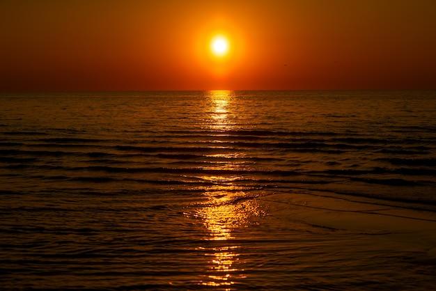 해변 모래와 물에 황금빛 일몰 빛이 있는 추상적인 여름 배경 프리미엄 사진