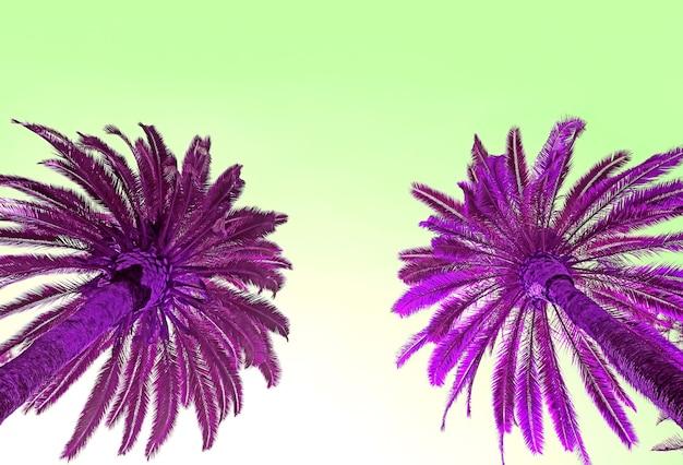 Абстрактные сюрреалистический стиль поп-арт две яркие фиолетовые пальмы на лаймово-зеленом небе